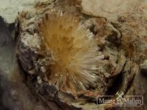 Aragonit - niezwylke ciekawe skupienia kryształów