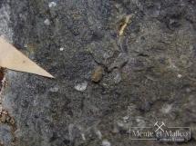 Brandholzyt -  rzadki wodorotlenek antymonu i magnezu - Słowacja