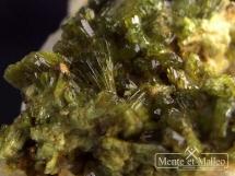 Epidot - ładne kryształy