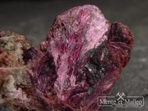 Erytryn - bardzo rzadki minerał kobaltu - duży kryształ