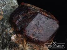 Granat almandyn w skale z Tyrolu
