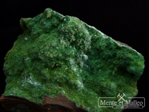 Kuproaustynit - bardzo rzadki minerał