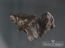 Meteoryt żelazny Sikhote Alin