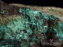 Tyrolit -  rzadki arsenian wapnia i miedzi - Słowacja